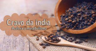 Cravo da índia acelera o metabolismo