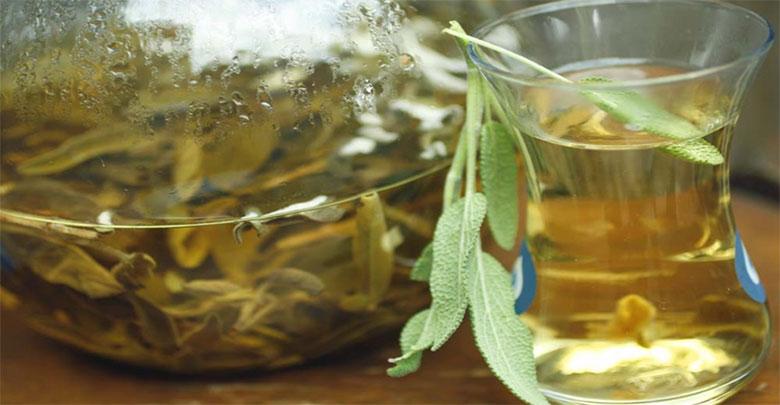 Chá de sálvia com canela e louro para emagrecer